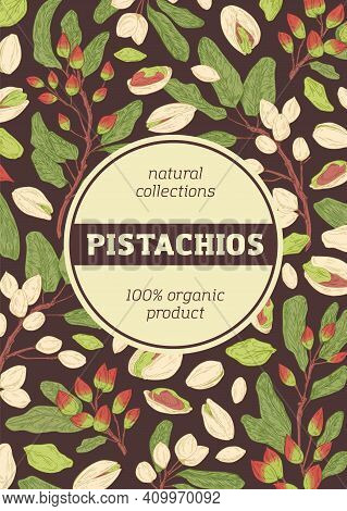 Design Of Packaging With Pistachio Pattern On Dark Background. Vertical Packing Template With Branch