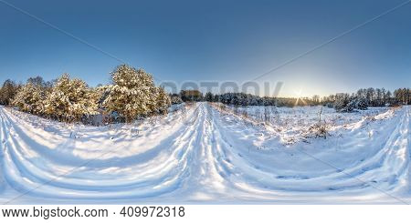 Winter Full Spherical Hdri Panorama 360 Degrees Angle View On Snowdrift Path In Snowy Pinery Forest