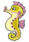 seahorse,cartoon picture for babies and little kids,illustration isolated on white background poster