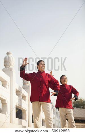 Two seniors practicing Taijiquan in Beijing