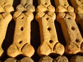 Close up of the dog cookies in a row. poster