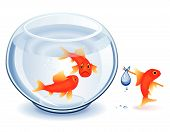 Goldfish moving from his fishbowl with bundle poster