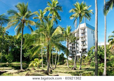 Luxury Hotel On Hawaii With Palms Trees In Background