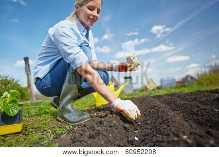 Image of female farmer sowing seed in the garden
