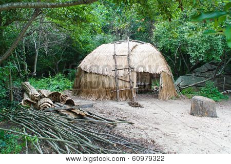 Native American wigwam hut / house in woods poster