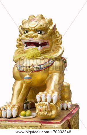 Chinese Lion,glod