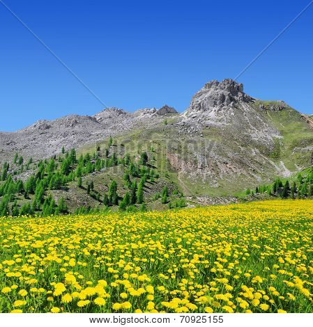 Val di Fassa, Italy Alps