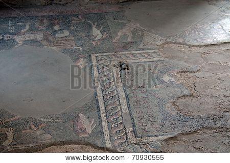 Tha Mozaics On The Floor In Garni