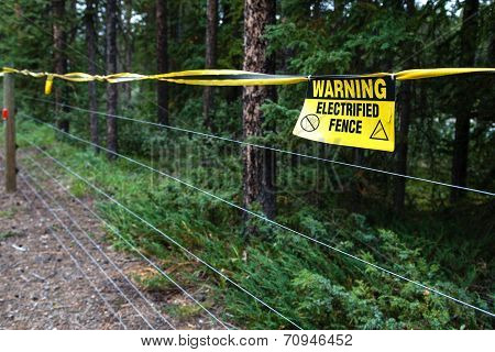 Electric Fence Warning