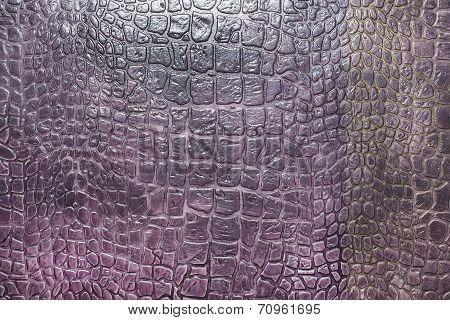 texture of crocodile skin