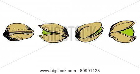 set of pistachio on white