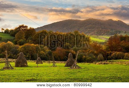 Agriculture Field In Mountains At Sunrise