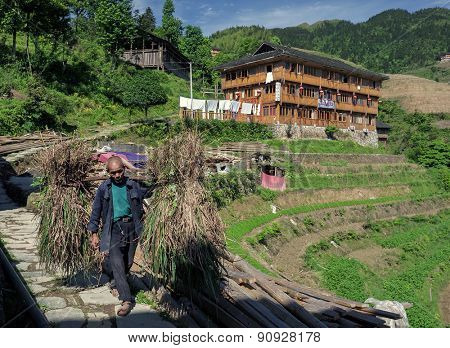 MAY 23, 2010 - GUANGXI,CHINA: An unidentified farmer carries two load of cut grass down the hill slopes to the market down the hill. The Long Ji terraced rice fields is a farming community.