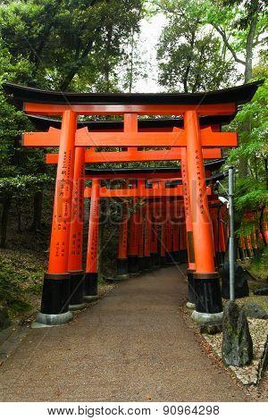 Torii gates at Fushimi Inari-Taish shrine in Kyoto Japan