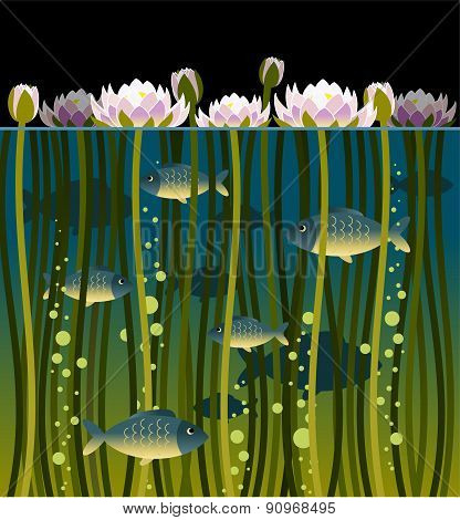 Water Lilly And The Fish