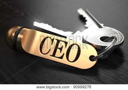 CEO - Bunch of Keys with Text on Golden Keychain.