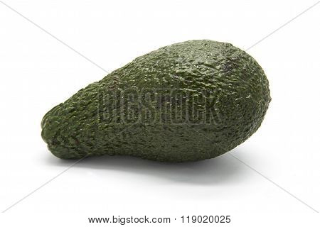 One avocado on the white isolated background