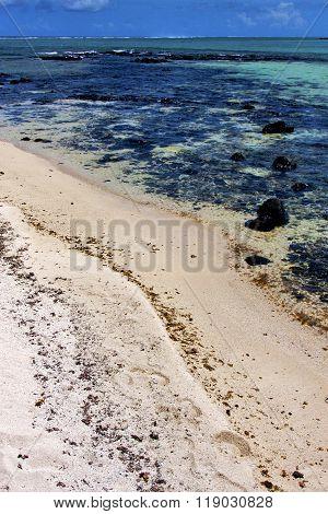 Foam Footstep  Ocean
