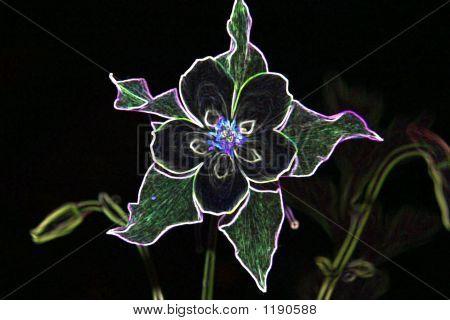 Neon_Flower