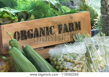 Fresh Organic Produce In Wooden Box