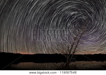 Beautiful Spiral Star Trails over lake, with old tree. Trails reflection in water.