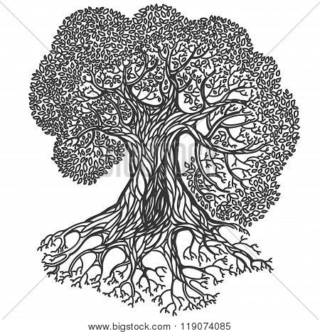 Tree Illustration. Stylized Vector Isolated  Silhouette