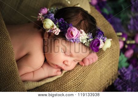 Sweet Dreams Of Newborn Baby. Beautiful Little Girl With Lilac Flowers