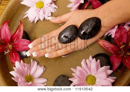 Woman's manicured hand