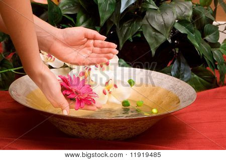 Woman's hands in a bowl of water
