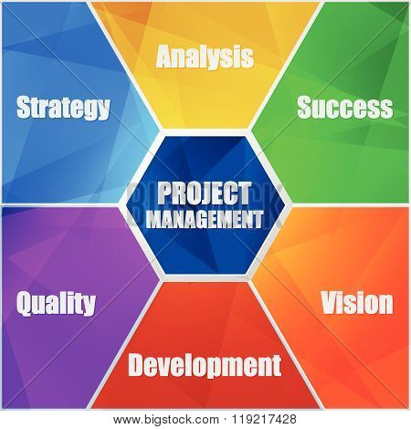 project management and business concept words in flat design infographic, vector