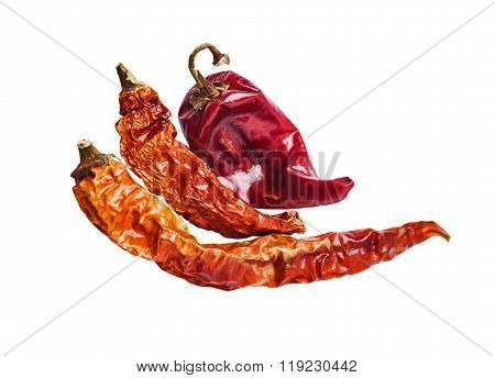 Three Dried Chili Peppers