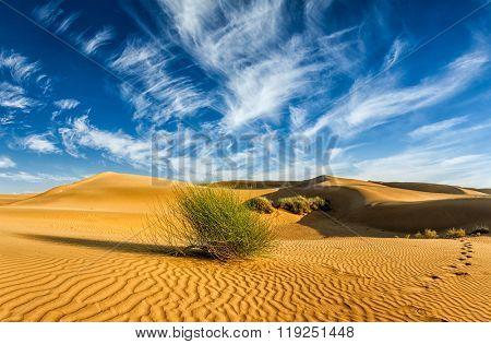 Panorama of Sam Sand dunes in Thar Desert. Rajasthan, India