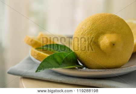 Lemons And Green Leaves Isolated On Light Background