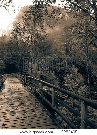 The Bridge of Daone's Valley