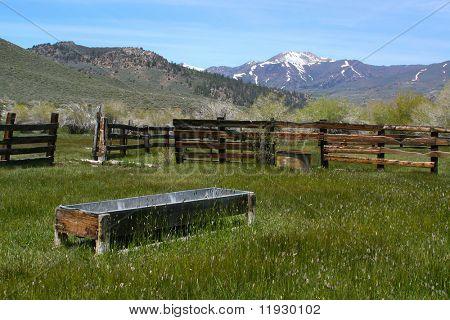 Taken in the Sierras - a rustic, old, abandoned farm and pasture. Rich with old wood fence, feeding troth and overgrown grass.