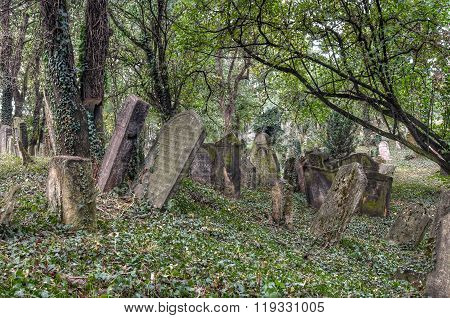 The Old Jewish cemetery at Kolin - one of the oldest landmarks of that kind in Bohemia