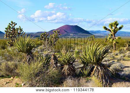 Mojave Desert Volcano