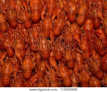 Some boiled crayfish.