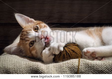 The kitten plays with a ball of yarn