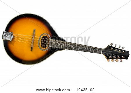 mandolin isolated on white background