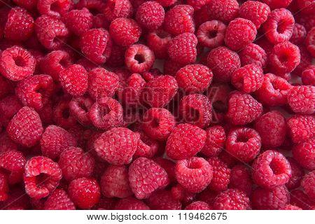 Delicious Raspberries Texture