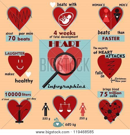 info graphics and interesting facts about the human heart