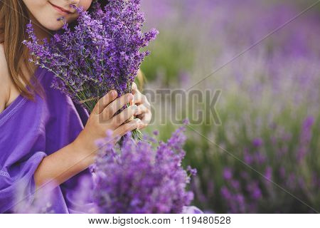 Bouquet of lavender in the hands of a girl