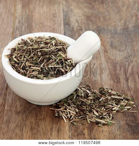 Skullcap herb used in natural alternative medicine in a mortar with pestle over old wood background.
