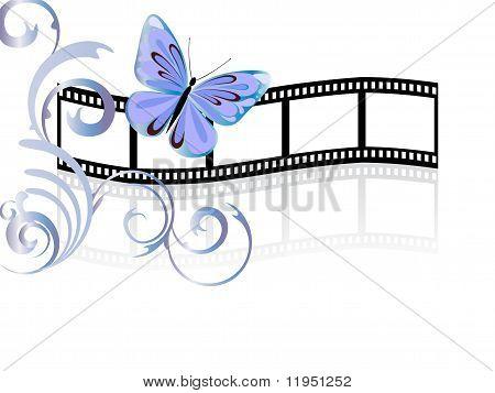 butterfly on film stripe