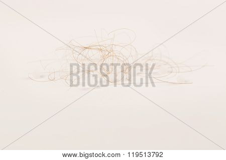 lost brown hair on white background