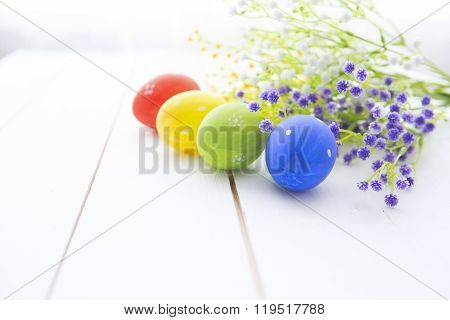Multicolored Easter Eggs In Fresh  Flowers Daisy.