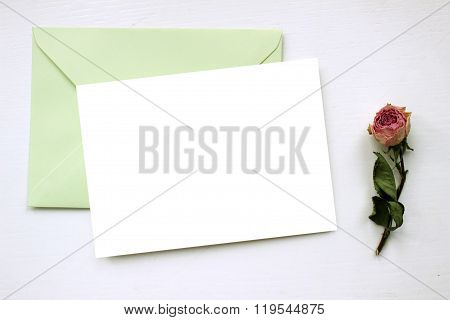Mockup For Presentations With Dry Roses