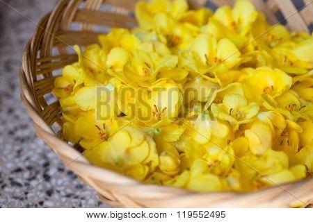 Mullein Flowers In A Basket