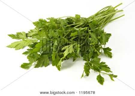 Juicy Fragrant Parsley